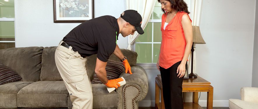 Morris Plains, NJ carpet upholstery cleaning
