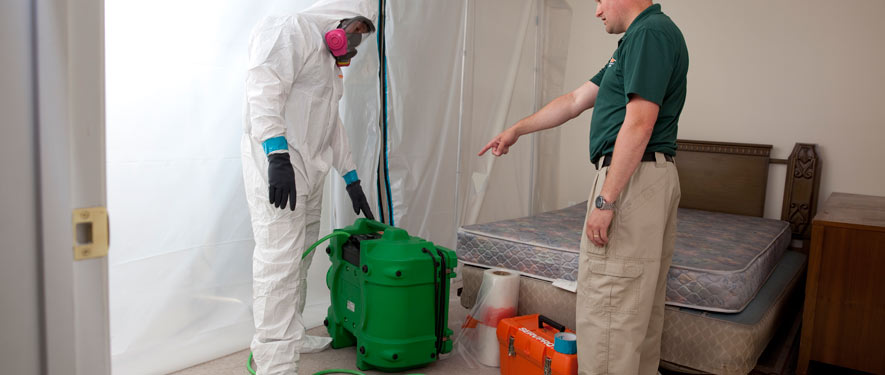Morris Plains, NJ mold removal process